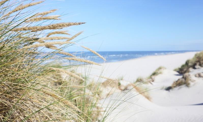 Juist. Die im niedersächsischen Wattenmeer gelegene Nordseeinsel hat sich zum Ziel gesetzt, bis zum Jahr 2030 komplett CO2-befreit zu sein – und fordert Touristen dazu auf, mitzuhelfen. (#03)